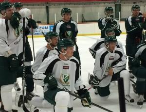 Hillding och Olofsson med flera vid en av genomgångarna Foto: Marie Angle/fbkbloggen