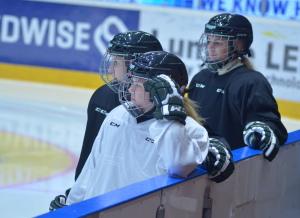 Damerna åker på lördagsmorgonen till Härjedalen för  två matcher mot Sveg Foto: Joakim Angle/fbkbloggen