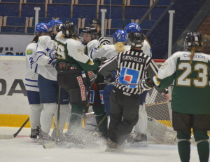 Tufft, tätt och ganska grinigt - precis som en bra hockeymatch ska vara! Foto: Joakim Angle/fbkbloggen