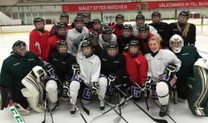 FBK Dam och lagets framfart på isarna har skapat ett stort lokalt intresse för damhockey! Men också nationellt känns det som om sporten står inför ett genombrott... Foto: Marie Angle/fbkbloggen