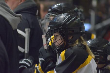 Tjejhockeyn lever och frodas i Värmland - och givetvis fungerar Färjestads damer som ambassadörer... Foto: Joakim Angle/fbkbloggen